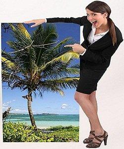 travel tourism degree programs careers